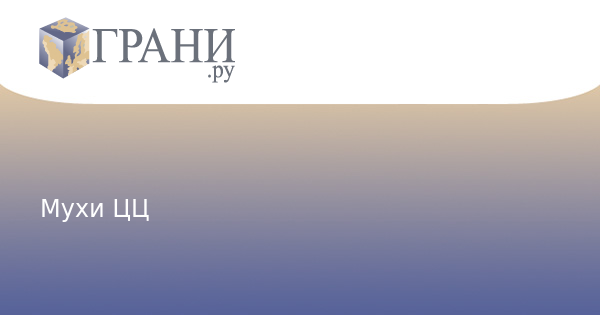 Грани.Ру: Мухи ЦЦ | Колонки / Пионтковский: http://graniru.org/opinion/piontkovsky/m.186294.html